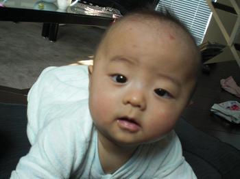blog619.JPG